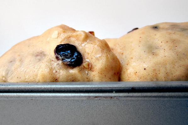 dough rise2