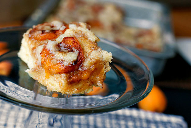 Slovak Apricot Cake Slice