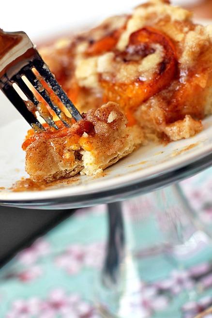 Slovak Apricot Cake Take a Bite Out