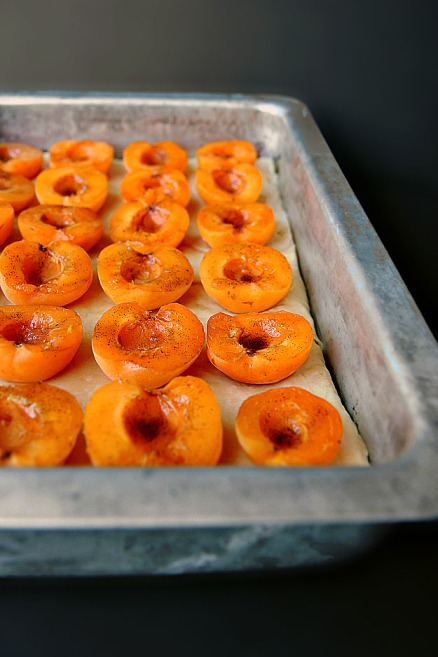 Slovak Apricot Cake Vanilla Sugar