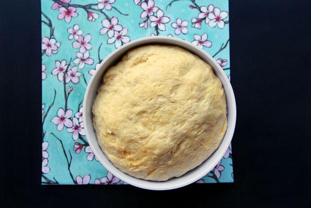 Slovak Apricot Cake Yeast Dough