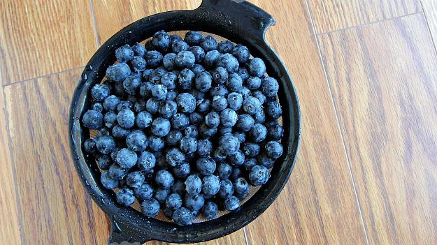 Fresh Blueberry Oatmeal Breakfast Bar