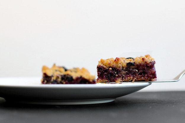 Oatmeal Blueberry Crumb Bar Recipe Squares