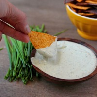 Trader Joe's Inspired Cilantro Chive Greek Yogurt Dip